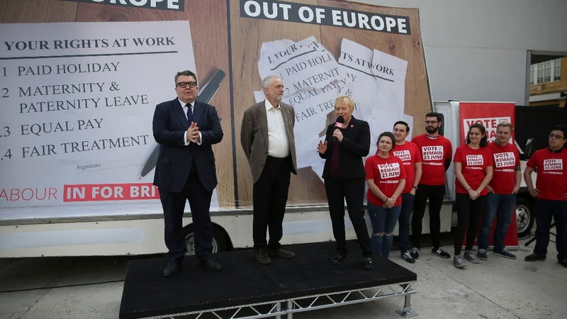 Labour try to drown out EU vote critique