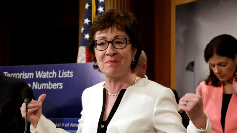 Collins fights to salvage gun action in Senate