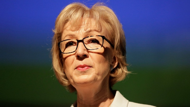 Leadsom 'sorry' after motherhood row