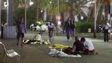 Truck 'terrorist' kills at least 80 in France