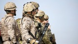 U.S. allies look at taking back Mosul