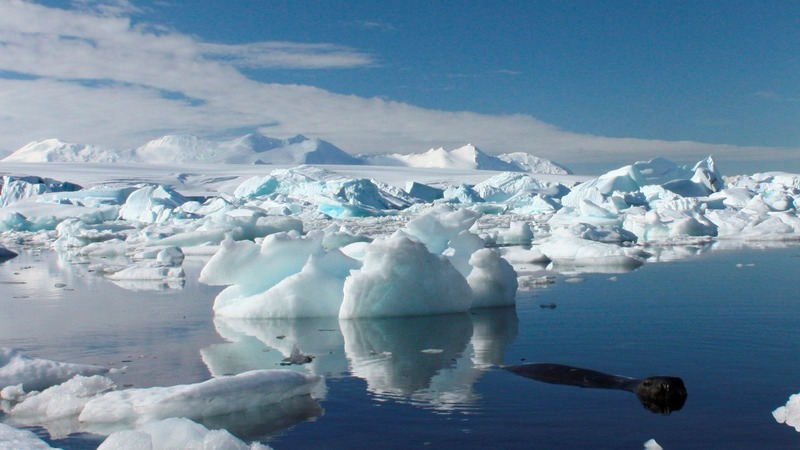 Global warming chills in part of Antarctica