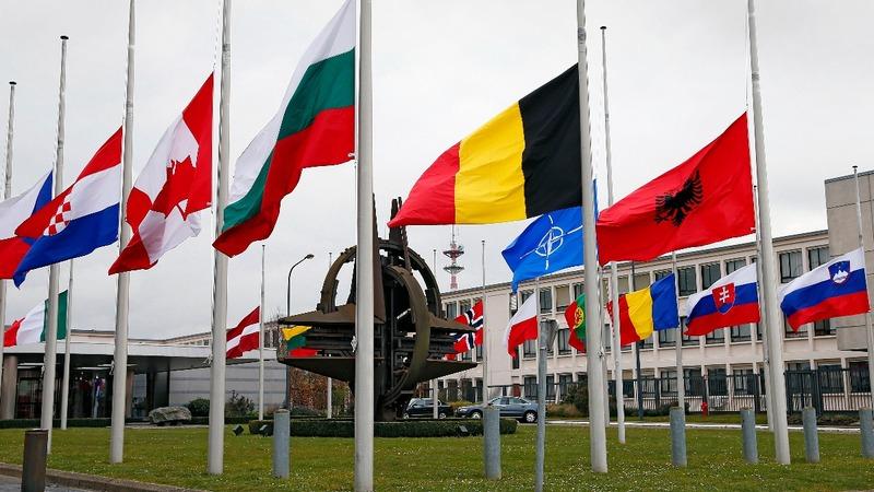 NATO, White House rebut Trump