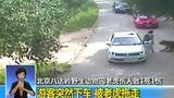 INSIGHT: Tiger attack in Beijing wildlife park