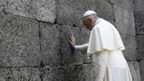 """Forgive so much cruelty"": Pope at Auschwitz"