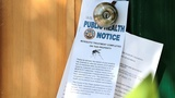 Zika spreads to Miami Beach