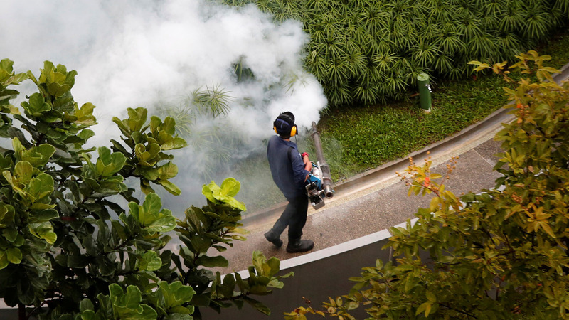 Dozens of Zika cases discovered in Singapore