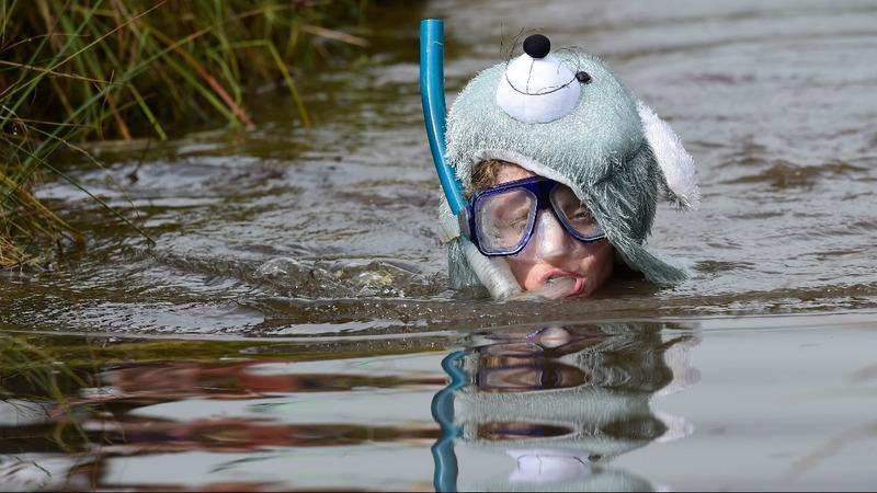 INSIGHT: Bog Snorkelling Championship drama