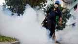 Singapore's Zika cases ring alarm bells in Asia