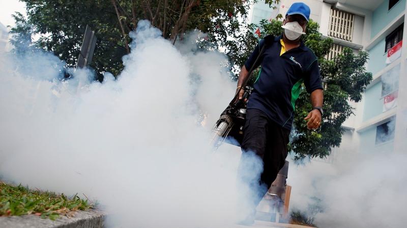 Singapore's Zika cases ring alarm bells in Asia