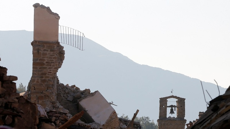 INSIGHT: Dog rescued ten days after Italy quake