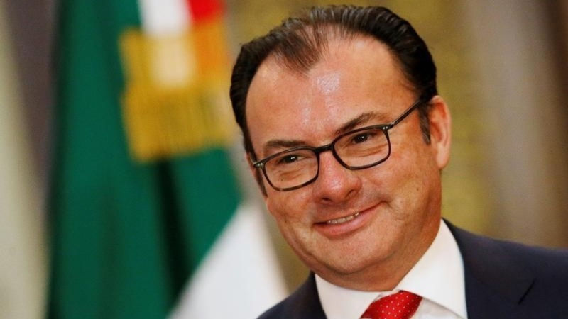 Mexico's finance minister quits after Trump visit
