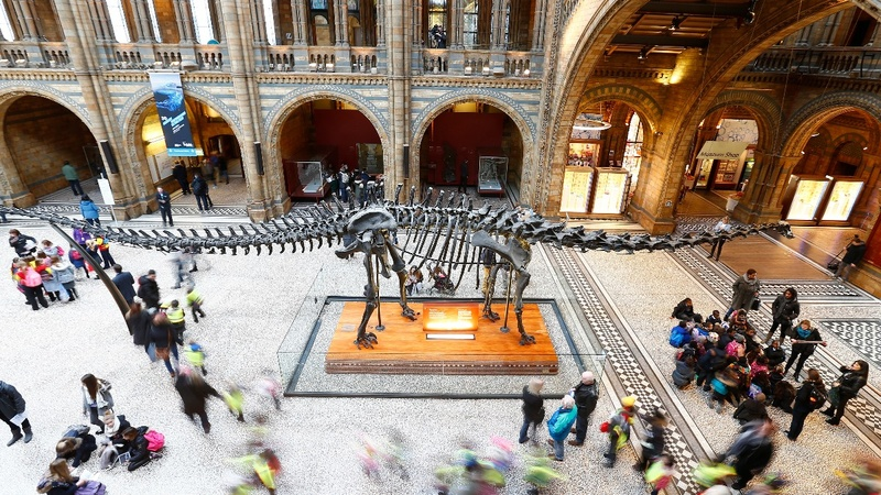 Google's virtual 'night at the museum'