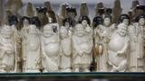 VERBATIM: Duke of Cambridge on Ivory trade
