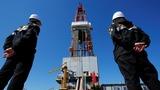 Oil rises as OPEC leaders meet in Algeria