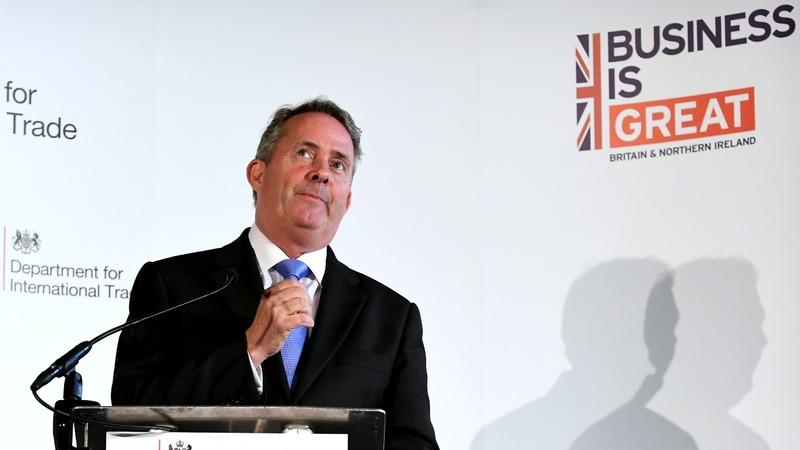 VERBATIM: UK trade minister on Brexit goals