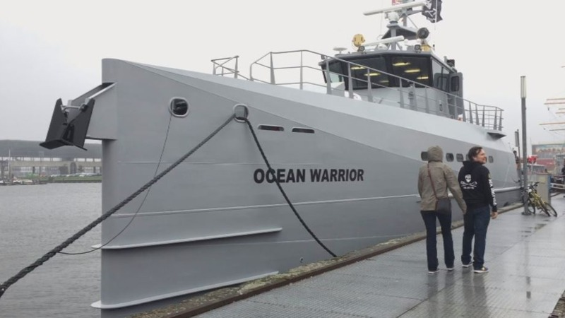 'Ocean Warrior' set to battle Japan's whalers