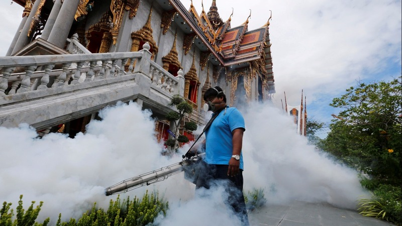 Thailand may test all pregnant women for Zika