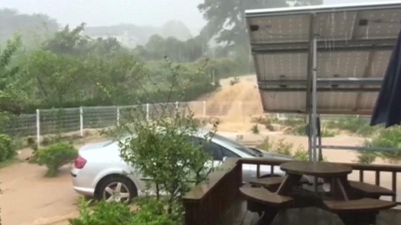 INSIGHT: Typhoon floods wreak havoc in S. Korea