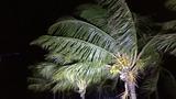 Deadly Hurricane Matthew heads for Florida