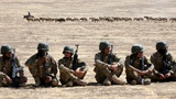 Mosul fight: Sunni force pleads for support