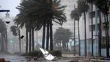 Hurricane Matthew pummels Florida coast, heads north