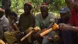West African cocoa farmers' future in doubt