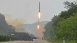N. Korea could field missiles next year: expert