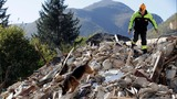 Quakes wreak widespread damage in central Italy
