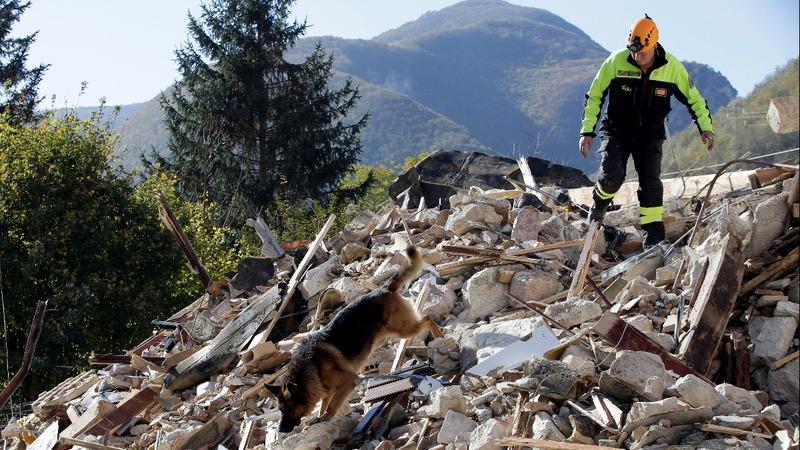 Quakes wreak widespread damage in central Italy