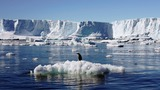 Antarctica to host world's largest marine park