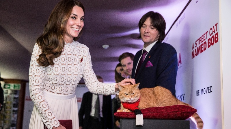 VERBATIM: 'Street Cat' premieres in London