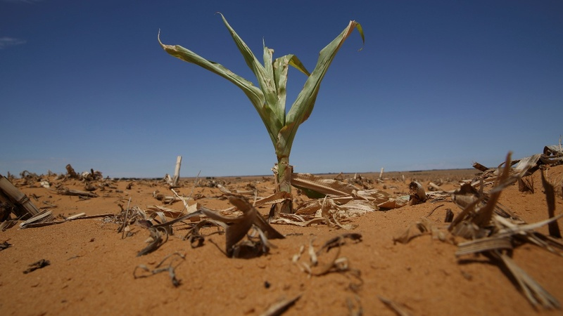 Drought threatens lucrative game industry