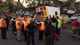 Tennessee school bus crash kills at least 6 children