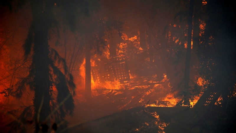 Police suspects arson in Israel wildfires