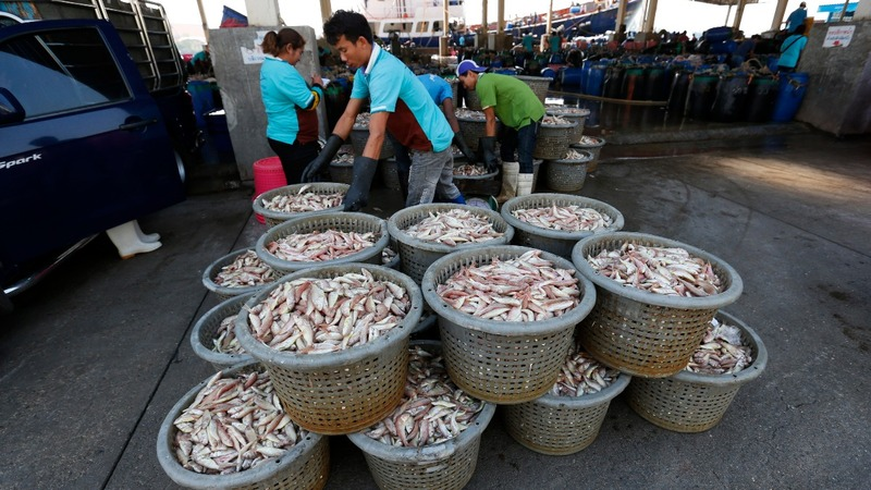 Climate change deepens Thailand's fish crisis