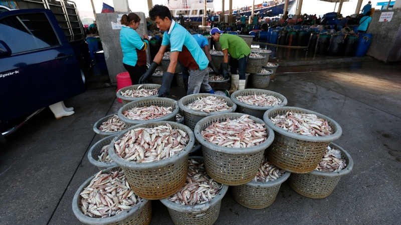Climate change deepens Thailand's fish crisis