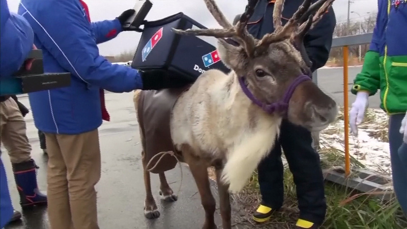 INSIGHT: Domino's Japan trains delivery reindeer