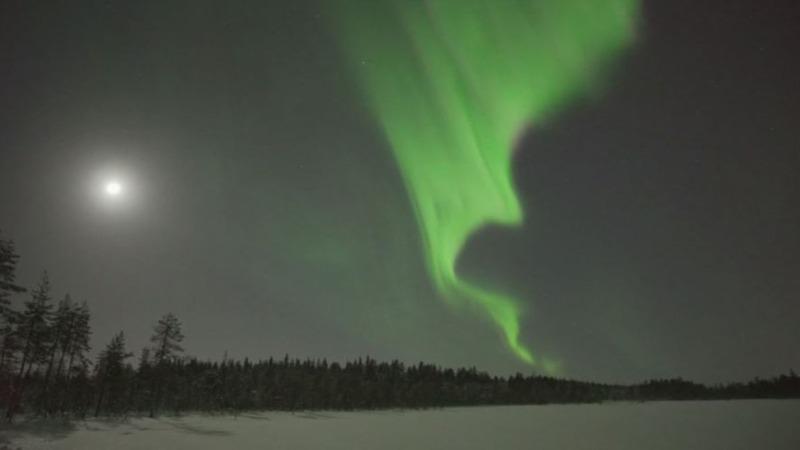 INSIGHT: Northern Lights dance across sky