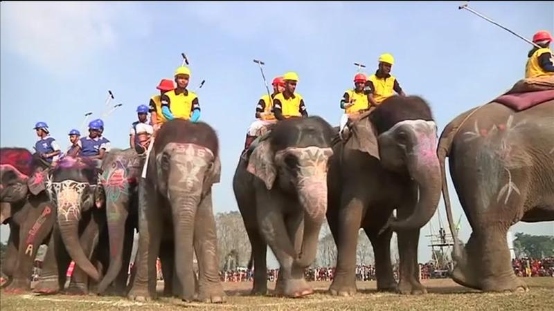 INSIGHT: Elephants entertain crowds at Nepal festival