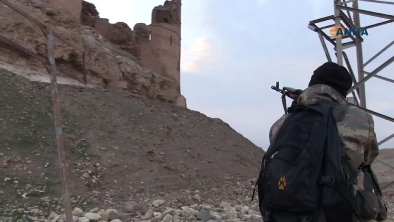 Militia seize castle in Islamic State's Syria stronghold
