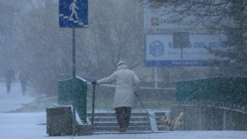 Frosts kill dozens in central Europe