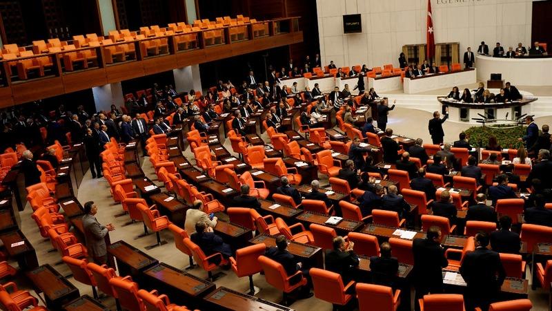 INSIGHT: Turkish parliament debate ends in brawl