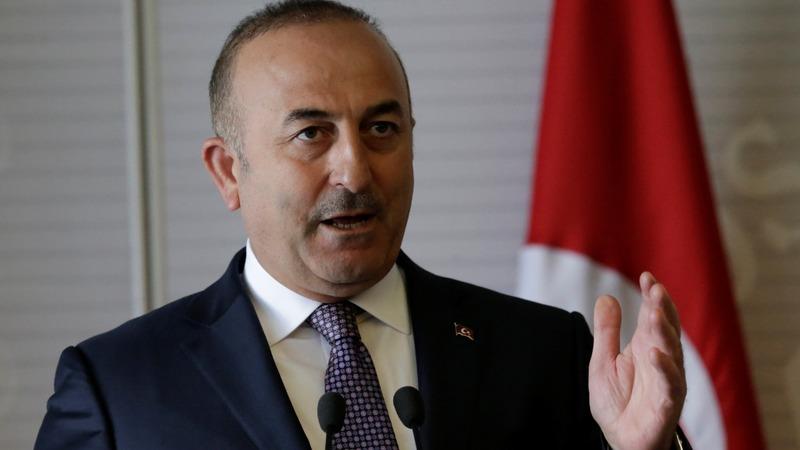 Turkey-backed forces make progress in Syria