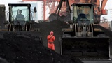 China bans imports of North Korean coal