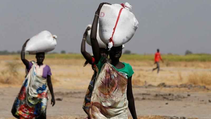 Parts of South Sudan experiencing famine - gov