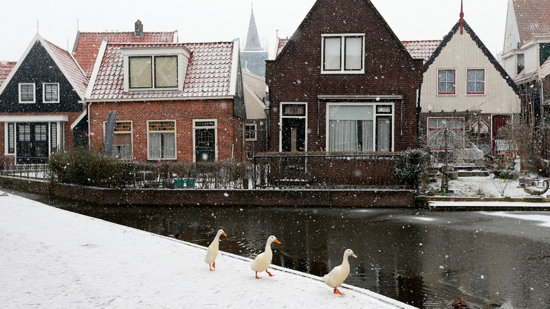 This Dutch village symbolizes Europe's far right