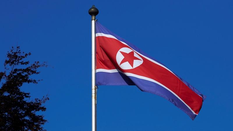 U.S. allies talk North Korea before Trump-Xi summit