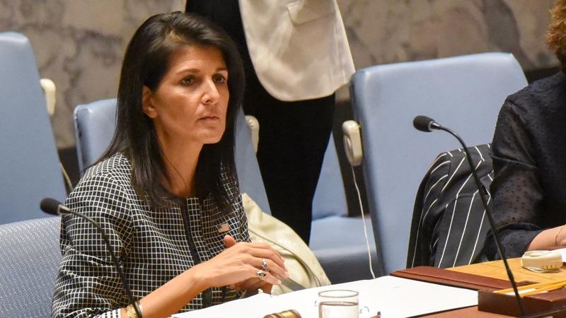 VERBATIM: Tense Syria debate at UN