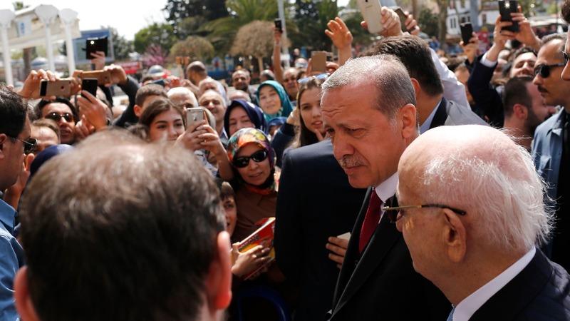 Erdogan swats referendum criticism